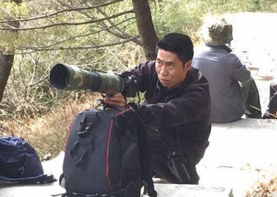 """大熊猫爬上30米高树晒太阳 被一群""""两脚兽""""偷拍半小时不肯下来"""