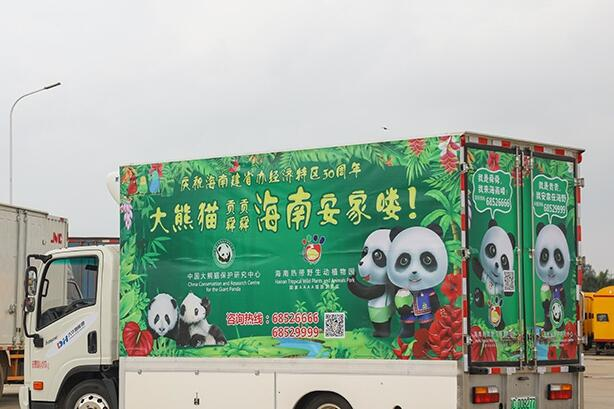 高清组图丨大熊猫入琼记:贡贡舜舜到新家